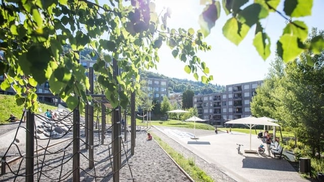 Eine Wohnsiedlung, viel Grün, helle Bausubstanz.
