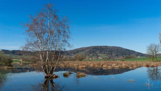 Blauer See und blauer Himmel, so präsentierte sich die Landschaft am Sonntagmittag rund um den Stadlersee.