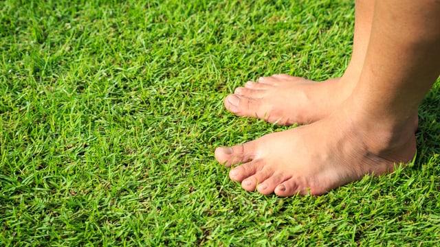 Füsse barfuss auf dem Rasen.