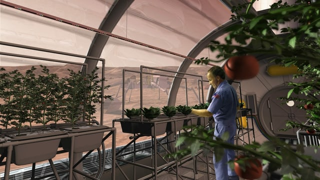 eine Visualisierung, wo ein Mann Gemüse erntet im Treibhaus auf dem Mars