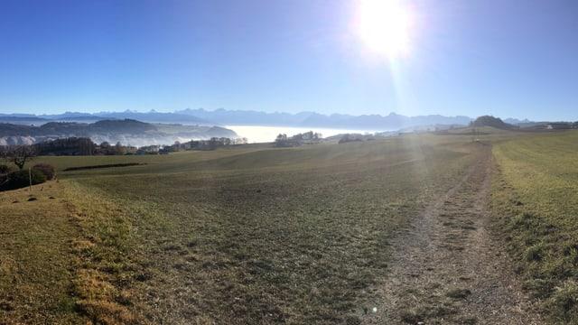 Blick von Zimmerwald über grüne Wiesen zu den Berner Alpen.