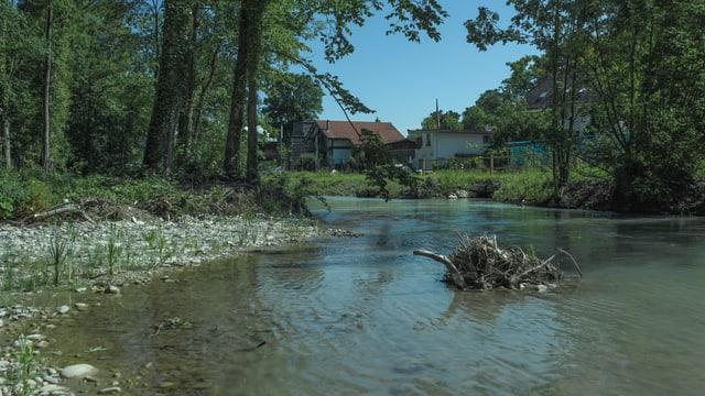 Flusslandschaft, Flussufer.