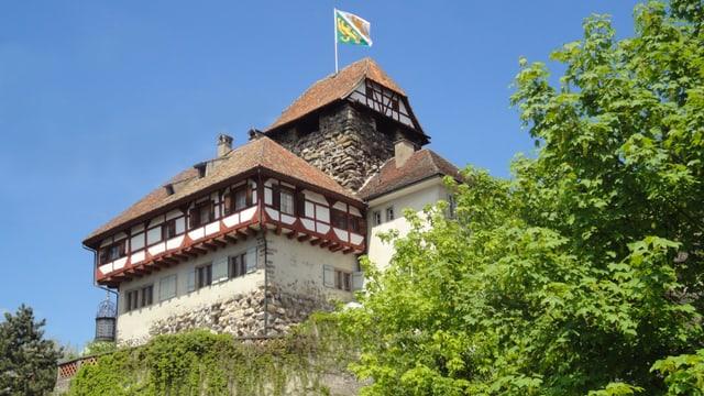 Schloss Frauenfeld.
