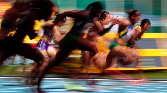 Bei der WM in Daegu 2011 waren 29 Prozent der Athleten gedopt.