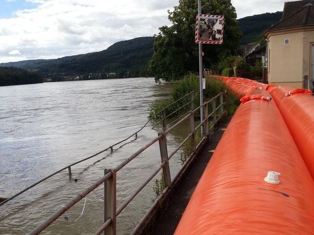 Orange Schläuche am Rhein-Ufer
