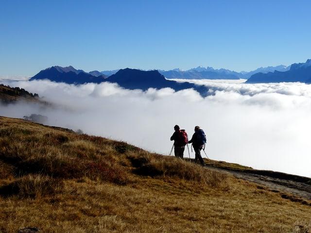 Zwei Wanderer auf rostbrauner Herbstwiese an der Sonne. Unter ihnen das weisse Nebelmeer, oben der blaue HImmel.