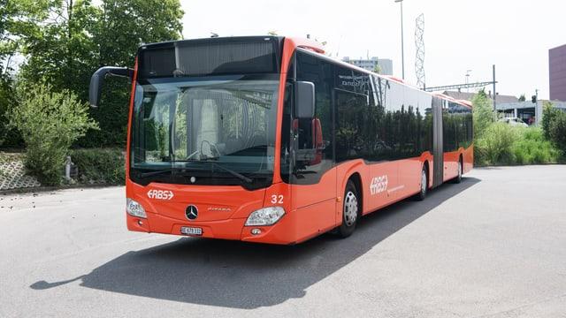 Oranger Gelenkbuss.