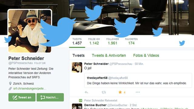 Screenshot von Peter Schneiders Twitter-Account mit Twitter-Vögeln