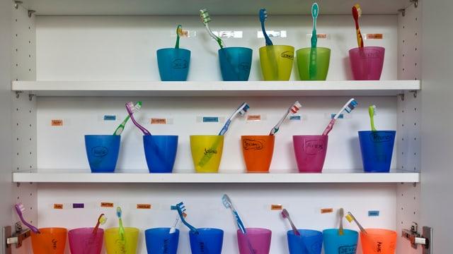 Farbige Becher mit Zahnbürsten in einem Kinderhort.