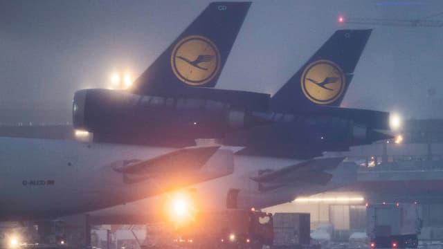 Heckflossen zweier Lufthansajet auf einem Flughafen