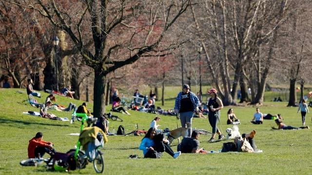 Prospect Park Brooklin