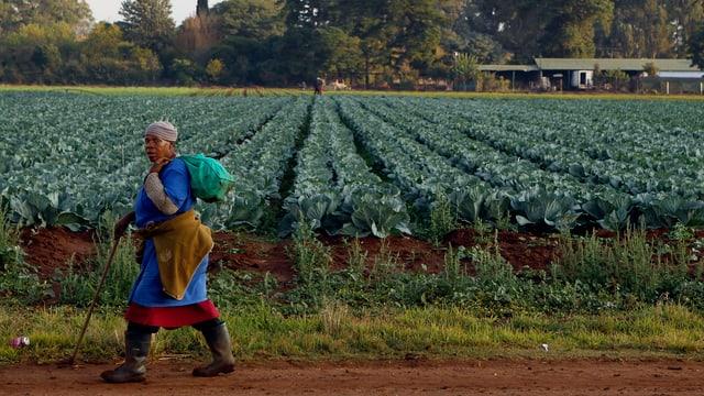 Eine schwarze Frau geht an einem Feld entlang.