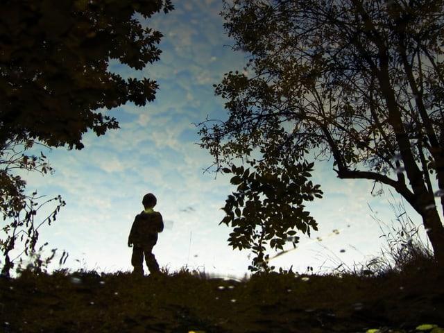 Silhouette eines Jungen von hinten, der auf einer Wiese steht.