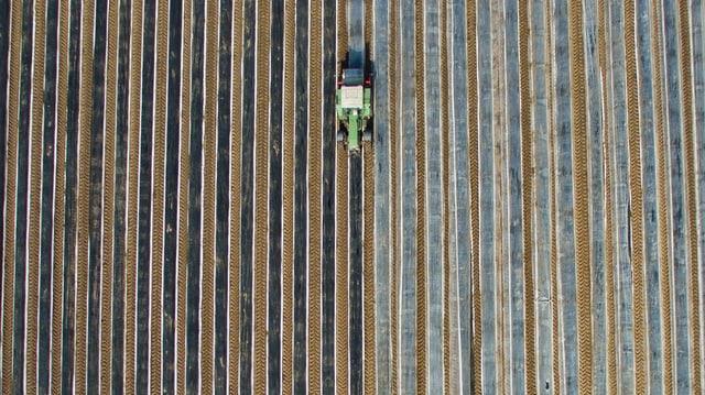Traktor auf einer Spargelplantage