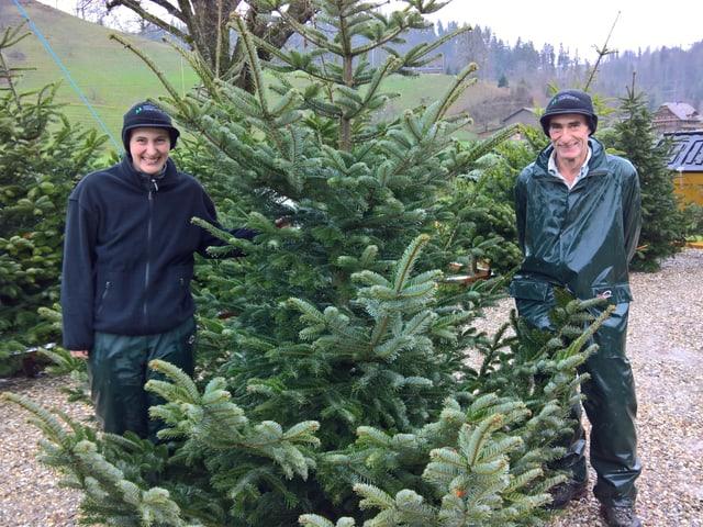 Eine Frau und ein Mann stehen neben einem grossen Christbaum.