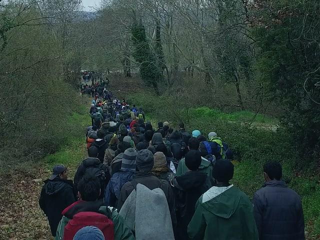 Ein Flüchtlingsstrom im Wald, von hinten gefilmt.