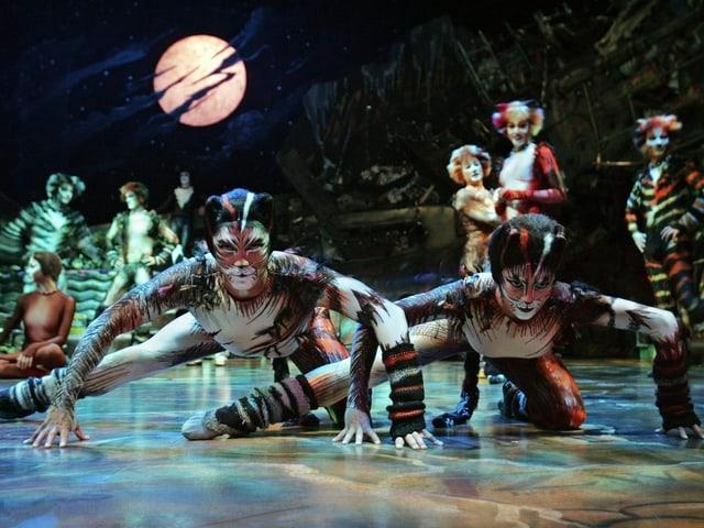 Darstelller in Katzenkostümen tanzen auf Bühne.