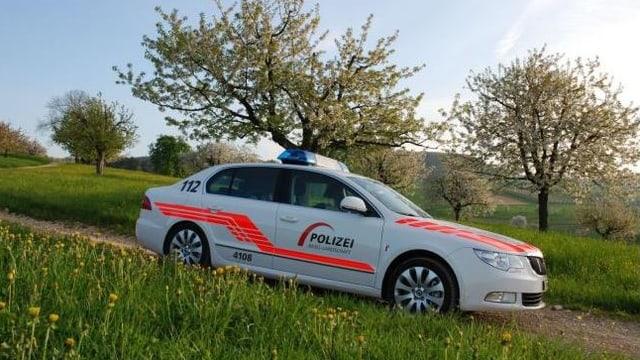 Polizeiauto vor Kirschbäumen