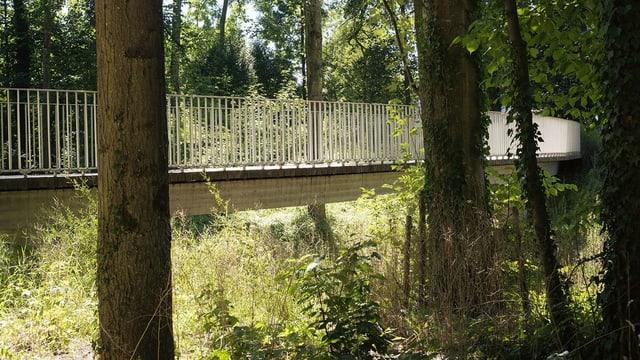 Eine Brücke im Park.