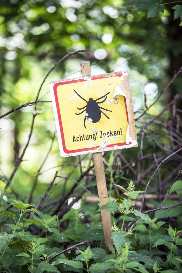 Warnschild vor Zecken in einem Wald