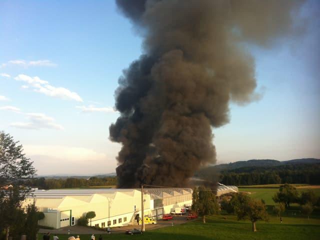 In der kleinen St. Gallischen Gemeinde Züberwangen in der Nähe von Wil steht ein Gewächshaus in Flammen.