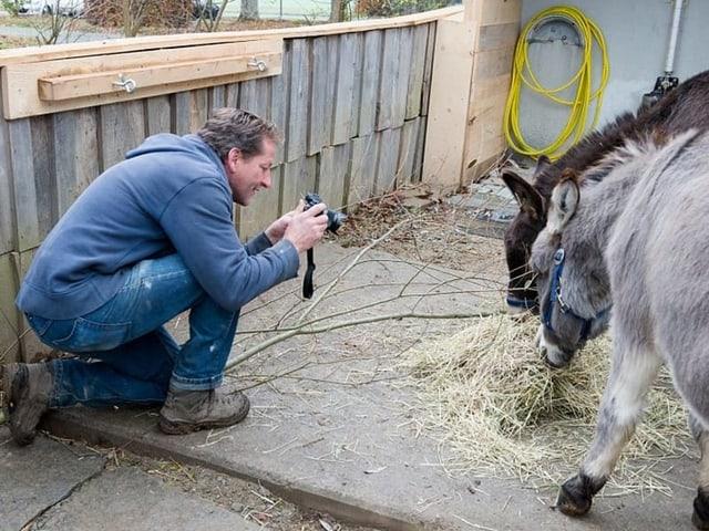 Ein Mann in blauer Arbeitskleidung kauert auf dem Boden und fotografiert zwei Esel beim Fressen.