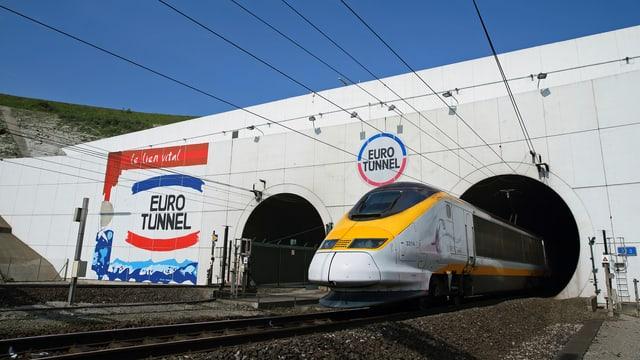 Zug fährt aus Tunnel