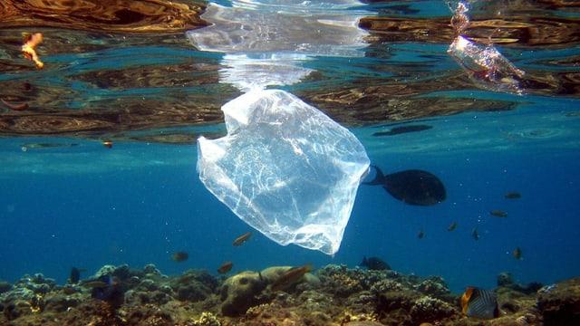 Plastikabfall in Ägypten