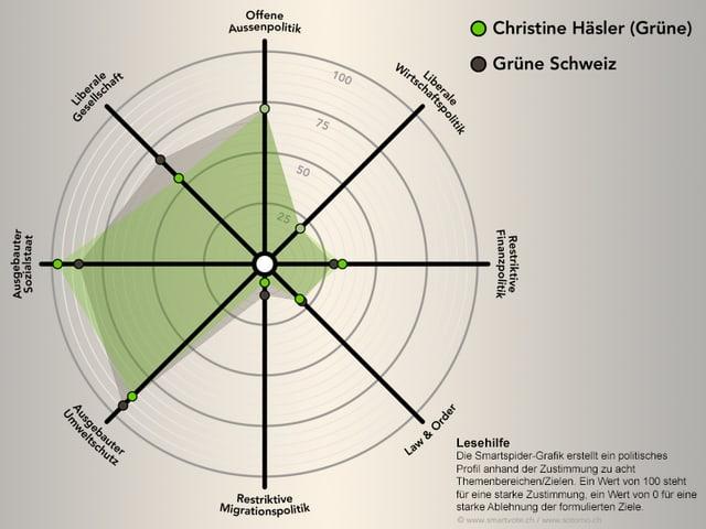 Die Smartspider von Christine Häsler.