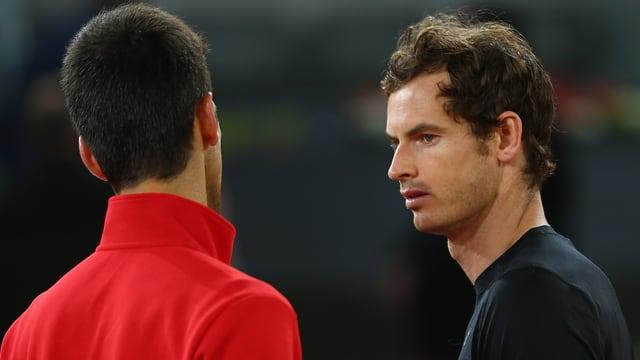 Novak Djokovic und Andy Murray (rechts) blicken sich an