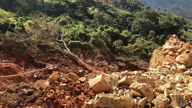 Geröll hat eine Schneise durch die Vegetation gerissen, ein ausgewurzelter Baum liegt unter den Steinen begraben