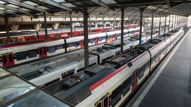 Bahnhofhalle mit still stehenden Zügen.