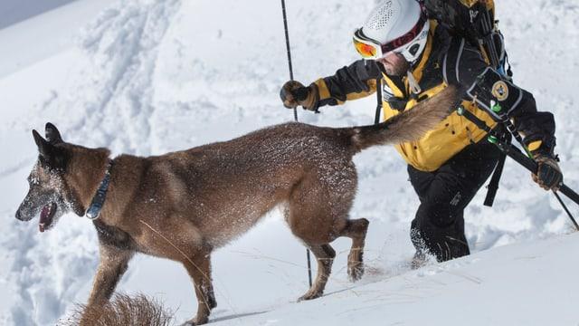 Hund und Retter stapfen durch den Schnee