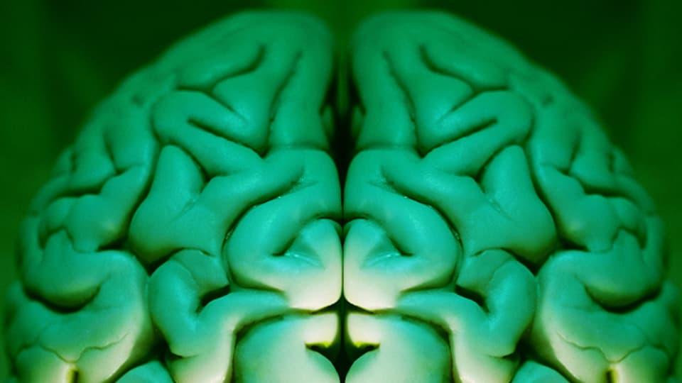 Wenn das Gehirn nicht richtig schaltet, muss das nicht immer schlecht sein.