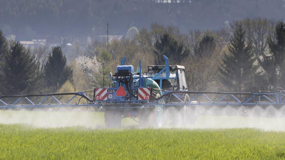 Die Pestizidrückstände in den Gewässern kommen von der Landwirtschaft, aber auch vom Einsatz in privaten Gärten.