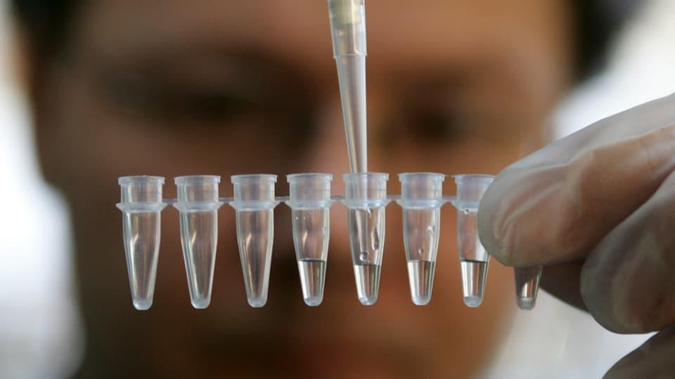 Die bernische Kantonsregierung will 141 Millionen Franken für ein neues Labor bezahlen.