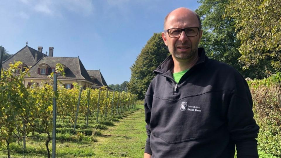 Das Rebgut der Stadt Bern müsse besser vermarktet werden, findet Betriebsleiter Thomas Berner.