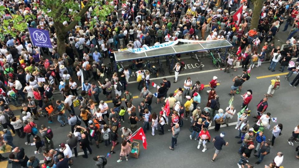Die Corona-Massnahmen-Gegner haben sich beim Inseli in Luzern versammelt.