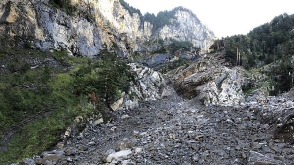 Grosse Steinmassen haben sich oberhalb der Axenstrasse gelöst.