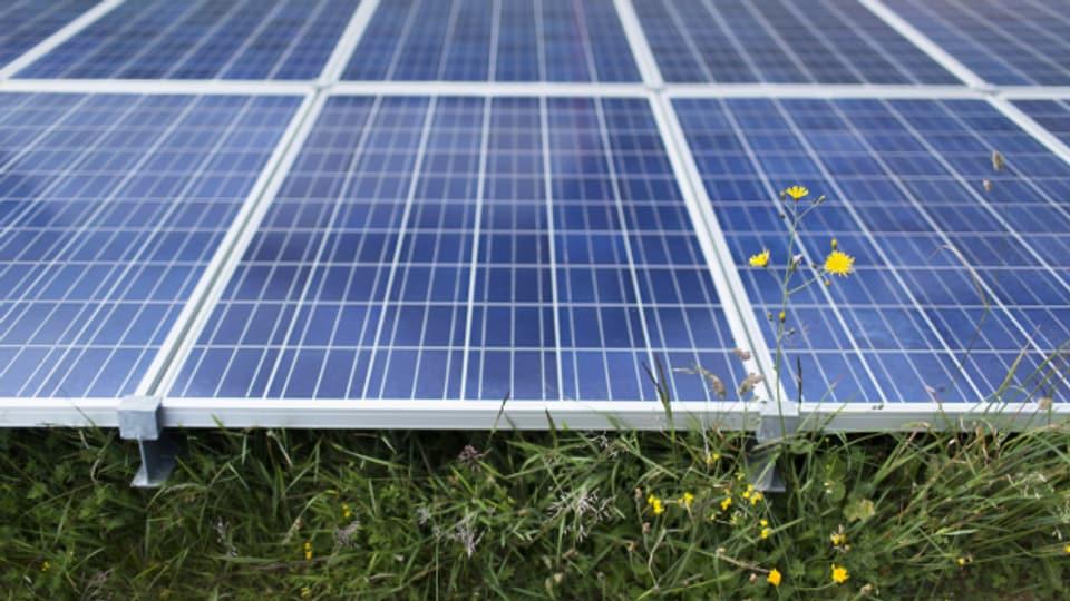 Auch der Kanton St. Gallen setzt auf alternative Energieformen.