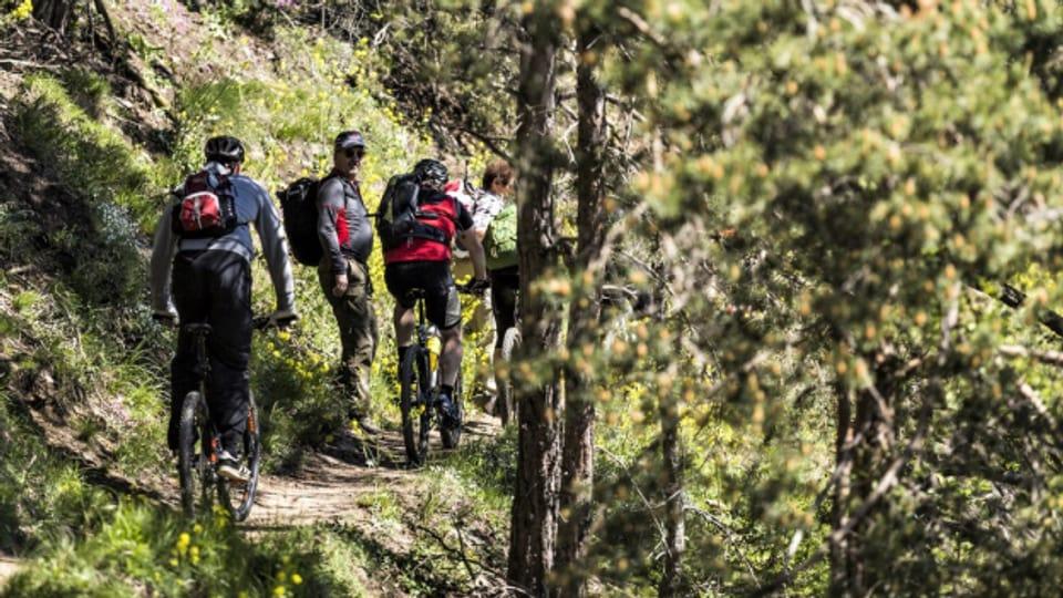 Verein «Appenzeller Wanderwege» will getrennte Wege für Wanderer und Biker