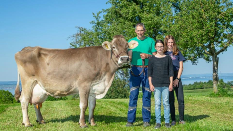 Auch «Chevron Stern» von der Familie Roth aus Langrickenbach gehört zu den Spitzenkühen.