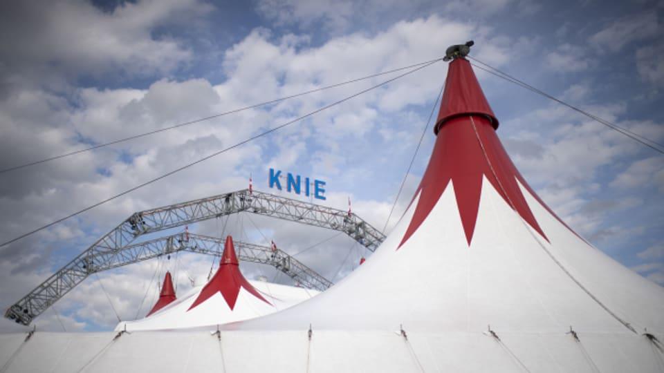 Zirkus Knie gewinnt gegen Tickethändler Viagogo vor Gericht