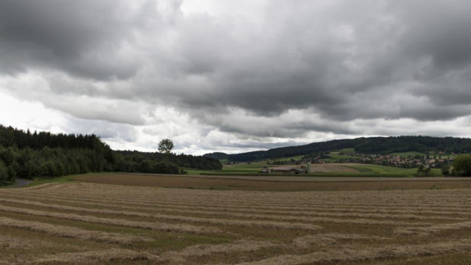 Die Unwetter sorgen für Ernteausfälle.