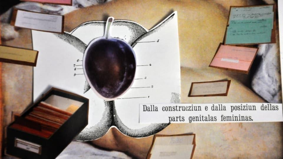 Per la vagina datti diveras circumscripziuns, per exempel la primbla.