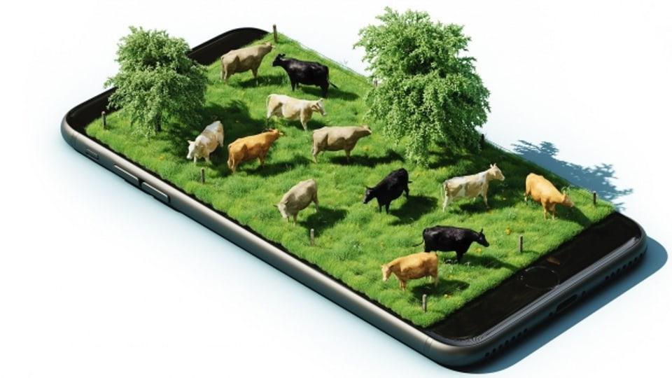 L'agricultura è be ina da bleras spartas nua che la digitalisaziun è daventada in element central.