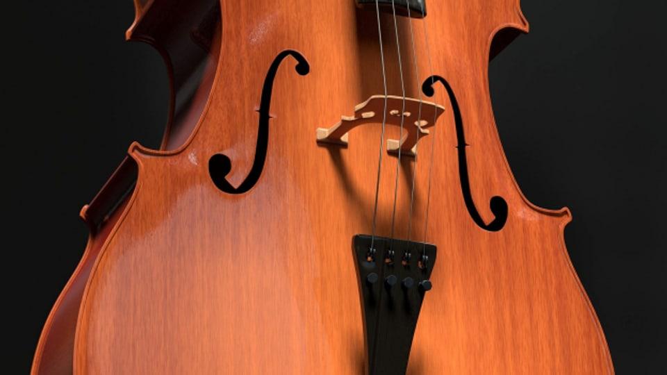 Violoncello, u curt cello – in instrument plain fassettas.