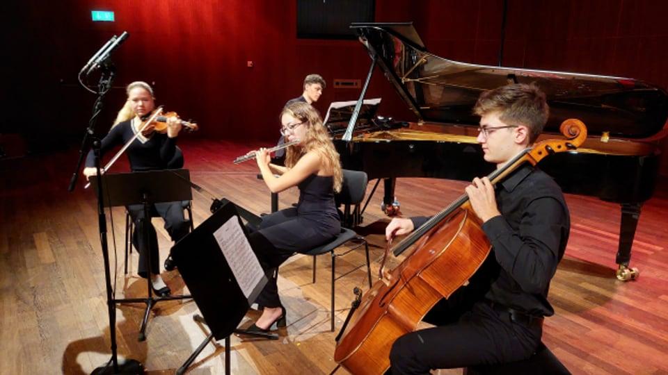 A. Schultsz, L. Pereira, A. Cattaneo, J. Gerstner