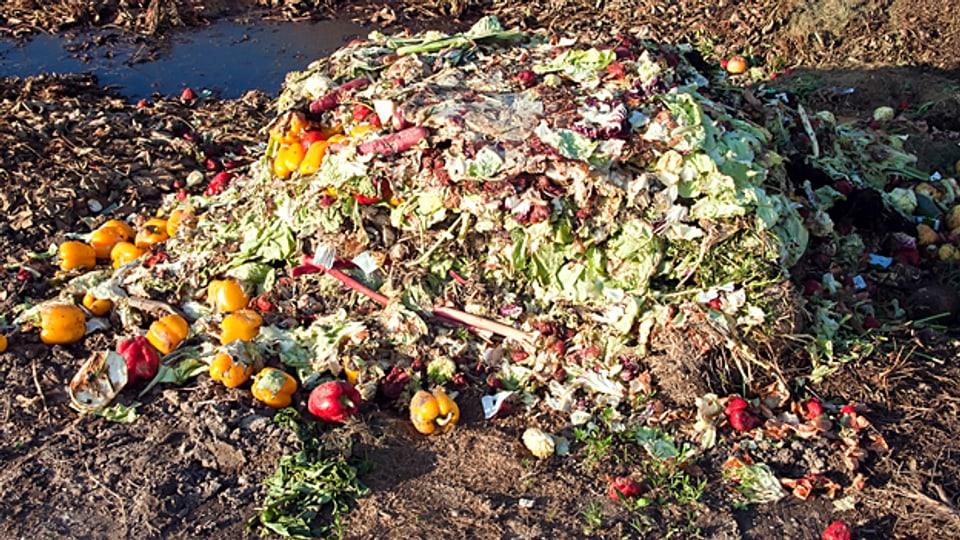 Im Müll statt im Magen: Auch in der Schweiz landen viele Nahrungsmittel im Abfall.