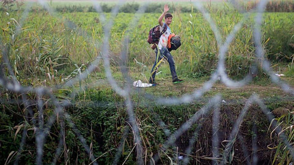September 2015: Ein Jugendlicher ist an der serbisch-ungarischen Grenze unterwegs.